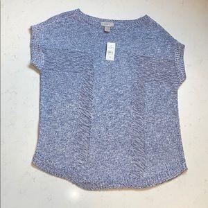 Ann Taylor LOFT Blue Knit Short Sleeve Sweater